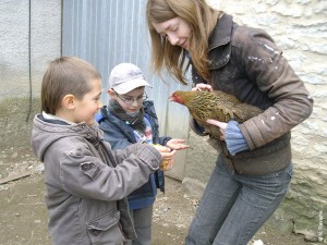 Visiter une ferme en famille