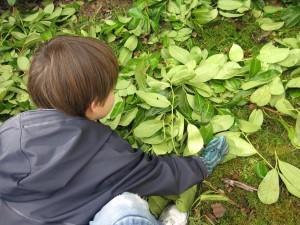 Les petits jardiniers - Jardinage en famille