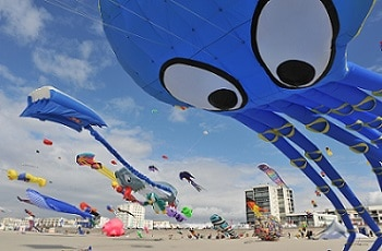 cerf volant festival