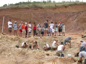 voir des dinosaures fouilles