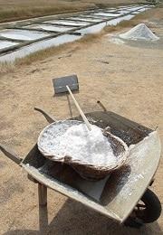 noirmoutier sel