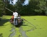 marais poitevin :  promenade en barque à maillezais