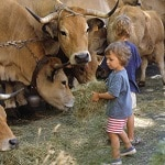 Idée d'activité Visite de ferme