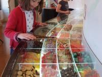 musée du bonbon languedoc