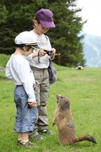enfants avec marmotte