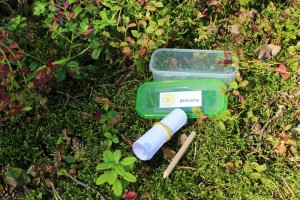 geocaching exemple de cache