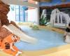 camping le Chaponnet piscine