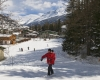 ski famille alpes