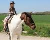 family ecolodge balade en poney
