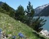 vacances en famille nature Pyrénées