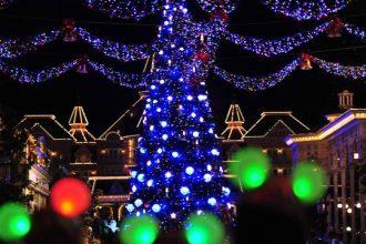 n015881_2020nov08_christmas-tree_16-9